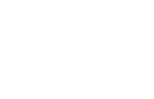 Safety N Action Logo